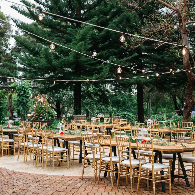 Gold Tiffany Chair Wedding Reception